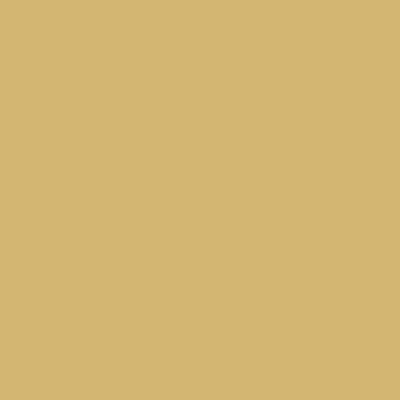 Песочно-жёлтый RAL 1002