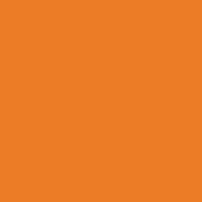 Насыщенный оранжевый RAL 2011