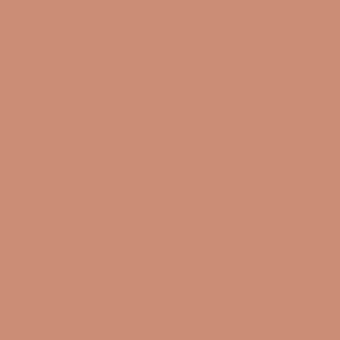 Бежево-красный RAL 3012