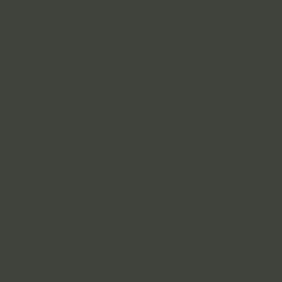 Серо-оливковый RAL 6006