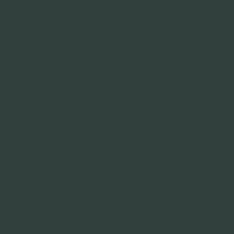 Чёрно-зелёный RAL 6012