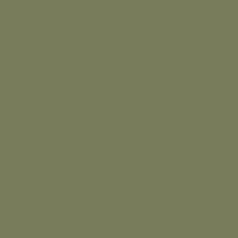 Тростниково-зелёный RAL 6013