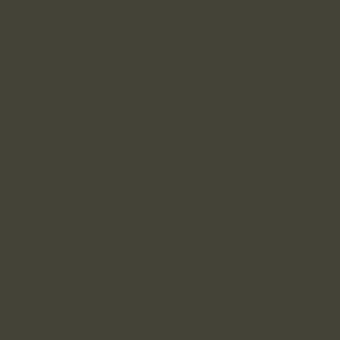 Жёлто-оливковый RAL 6014