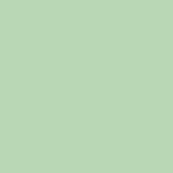 Бело-зелёный RAL 6019