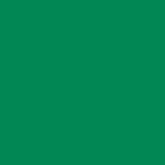 Транспортный зелёный RAL 6024