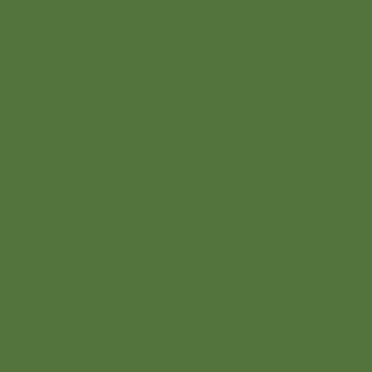 Папоротниково-зелёный RAL 6025