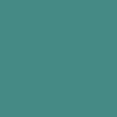 Мятно-бирюзовый RAL 6033