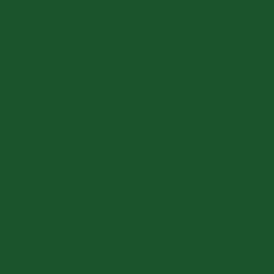 Перламутрово-зелёный RAL 6035