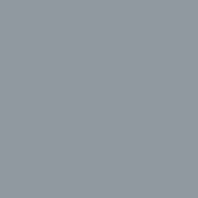Серебристо-серый RAL 7001