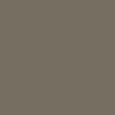 Бежево-серый RAL 7006