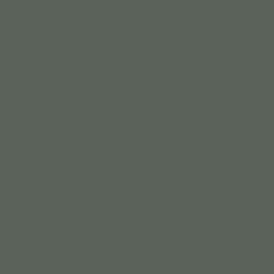 Зелёно-серый RAL 7009