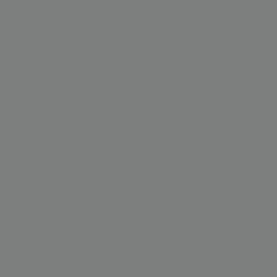 Пыльно-серый RAL 7037