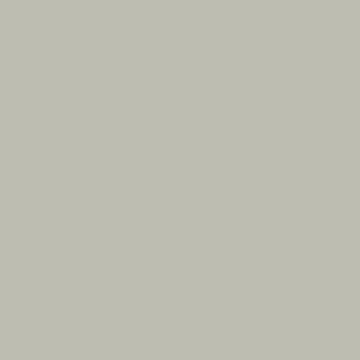 Серый шёлк RAL 7044