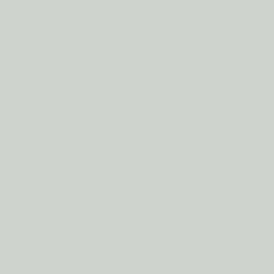 Папирусно-белый RAL 9018